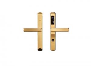 X290-金色